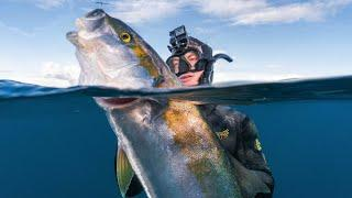 Epic Deep Water Spearfishing on a Camping Trip
