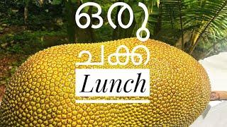 ഒരു ചക്ക lunch | A variety  of jackfruit dishes for lunch together with white rice