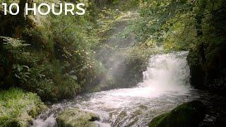 Forest Waterfall Sounds for Relaxing | White Noise Nature Sounds for Stress Relief, Tinnitus & Study