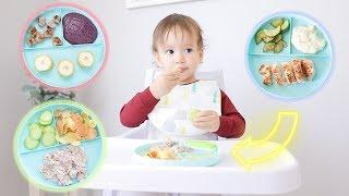 What My Baby Eats In A Day! MEAL IDEAS FOR YOUR BABY