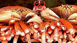 ASMR FIRE DUNGENESS Crab and SNOW Crab 핵불닭 던지니스 크랩 먹방 Mukbang Seafood Eating Sound