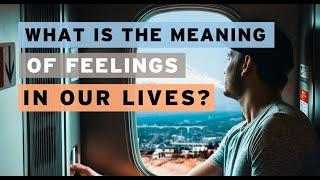 What Is the Meaning of Feelings in Our Lives? - New Life #1123