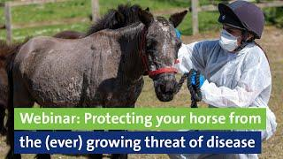 Webinar: Protecting your horse from the ever growing threat of disease