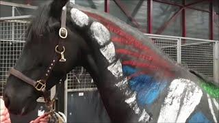 A painted Friesian horse. Where are the bones and muscles? This looks really beautiful!