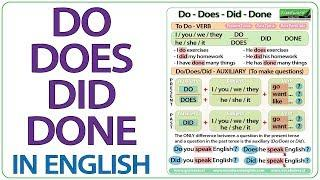 Do Does Did Done - English Grammar Lesson