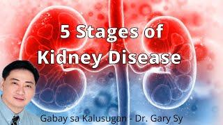 5 Stages of Kidney Disease - Dr. Gary Sy