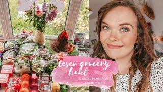 TESCO GROCERY HAUL & MEAL PLAN - FAMILY MEAL IDEAS - JUNE 2020