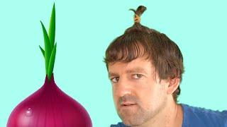 Onion Hairstyle | Food Vocabulary in English