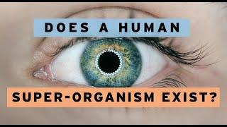 Does a Human Super-Organism Exist? - New Life #1123