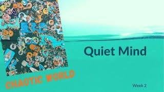 Chaotic World - Quiet Mind: Class 2