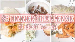 $5 DINNER CHALLENGE | QUICK AND AFFORDABLE MEALS | BUDGET FRIENDLY COOK WITH ME | FAMILY OF 4 MEALS