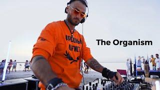 The Organism - Live @ WAVE / Pink Lake, Spot Guide Home Spot, Ukraine / Melodic Techno Mix