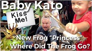 """Baby Kato Funny New Frog """"Princess"""" Search Best friend? fairy tail kiss"""
