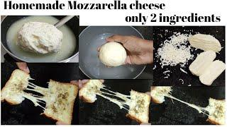 Homemade Mozzarella cheese using milk | without Rennet | How to make Mozzarella cheese in tamil