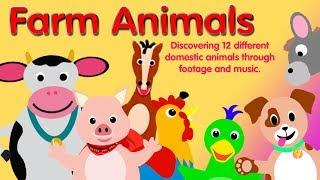 Farm Animals - A Baby Dolittle Inspired Video