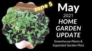 How my plants are growing in my 1st home greenhouse