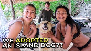 EPIC ISLAND with Sharks Dogs & Cats!