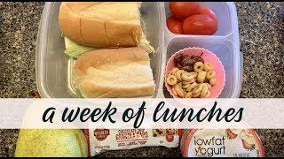 A WEEK OF SCHOOL & HUSBAND LUNCHES || COLD LUNCH IDEAS || BACK TO SCHOOL LUNCHES