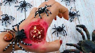 Stop Motion Cooking   Make a spider insect soup from a tool make up   Funny videos ASMR