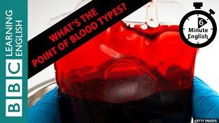 What's the point of blood types? - 6 Minute English