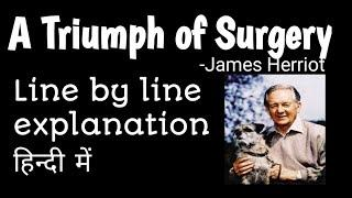 A triumph of surgery class 10 english footprints without feet line by line explanation in hindi.