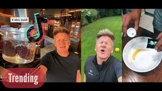 Gordon Ramsay vs Bad Chefs on TikTok and it is Hilarious