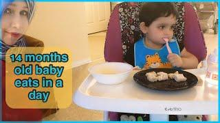 what my 14 months baby eats in a day//toddler meal ideas//healthy toddler meals //pakistani mom