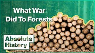 The Shortage Of Wood During WW2 | Wartime Farm | Absolute History