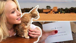 The END OF HARVEST but a NEW FAMILY MEMBER (exciting announcement) Farm Life Vlog