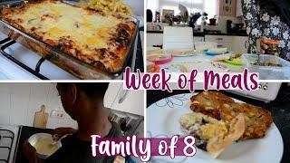 Week of Meals for a Family of 8 | Breakfast, Lunch & Dinner | Family Dinners, Meal Ideas | Shamsa