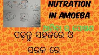 Nutrition in amoeba.ଆମିବା ର ପୋଷଣ। feeding and digestion process.science video by ss study center